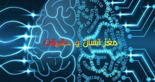 مغز انسان و حقیقت 310x165 - مغز انسان و حقیقت